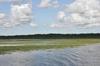 <p>Jezioro Druzno</p>